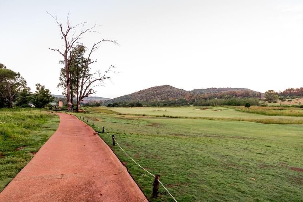 Life Coaching - Road running through green fields
